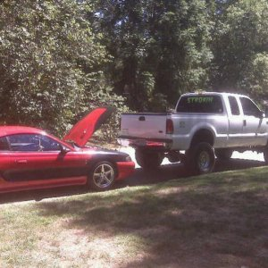 the stang and strokin
