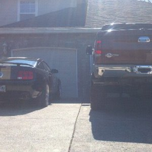 Shelby & King Ranch